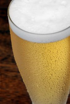 Free Beer Stock Photography - 8609912