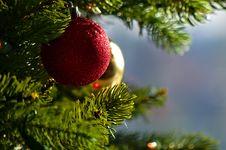 Free Christmas Morning Stock Photo - 86005130