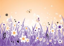Free Spring Meadow Beautiful Stock Photography - 8611312
