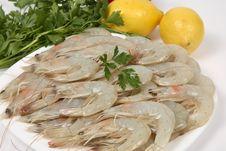 Free Shrimp Stock Image - 8612861