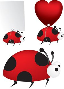 Free Ladybird Set Stock Photo - 8612930