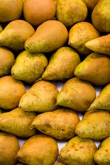 Free Pears Stock Images - 8612964