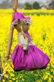 Pengzhou, China: Doll Scarecrow In Rapeseed Field Stock Photo