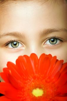 Little Smiling Girl With Flowers Stock Images