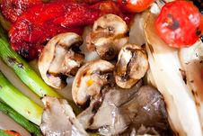 Tasty Fried Vegetables. Stock Images