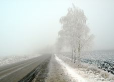 Free Country Landscape In Frost And Fog Stock Images - 8614284