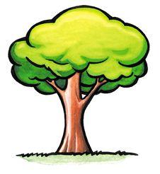 Free Green Tree Stock Photos - 8614353