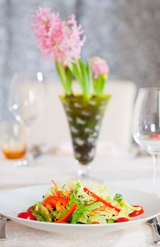Free Vegetable Salad Colorful Appetizer Dish. Stock Image - 8614441