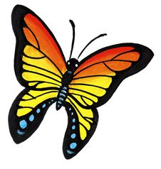 Free Butterfly Royalty Free Stock Photography - 8614637
