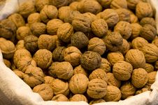 Free Nuts Stock Photo - 8614720