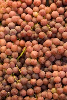 Free Grapes Stock Image - 8615401