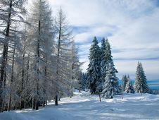 Free Winter Landscape Stock Photo - 8617200