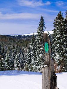 Free Winter Landscape Stock Photo - 8618070