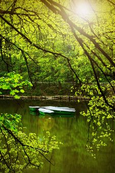 Free On The Summer Lake Royalty Free Stock Photography - 8618337