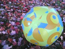 Free Beach Ball In Autumn Red Leaves Royalty Free Stock Images - 86180219