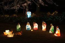 Free Nature, Christmas Decoration, Woody Plant, Christmas Tree Stock Image - 86180261
