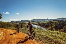 Free Bicyclist Passing The Road Near The River Royalty Free Stock Images - 86183219