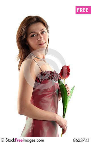 Free Girl In Evening Dress Stock Image - 8623741