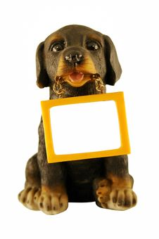 Free Dog With A Message Stock Images - 8620214