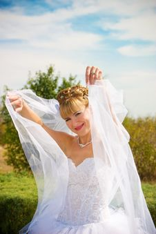 Free Pretty Bride Royalty Free Stock Photos - 8620558