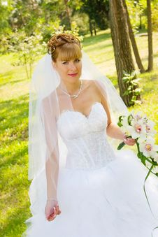 Free Pretty Bride Royalty Free Stock Image - 8620706