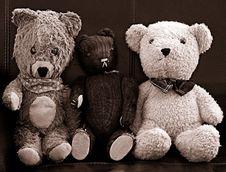 Free Bears Stock Photography - 8621522