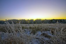 Free The Winter Sunset. Royalty Free Stock Image - 8621556