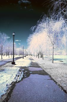 Free Infrared Landscape Royalty Free Stock Photo - 8621795