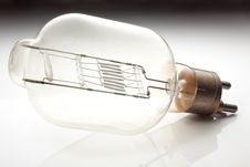 Free Bulb Stock Photo - 8622410