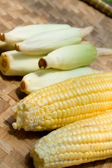 Corn On Bamboo Tray Stock Image
