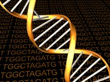Free DNA Stock Photo - 8624040