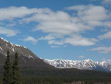 Free Pair Of Spruce Trees And Alaska Range (Broad Pass) Royalty Free Stock Photos - 8624158