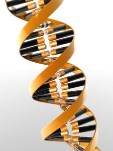 Free DNA Stock Image - 8624191