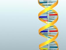 Free DNA Royalty Free Stock Photography - 8624297