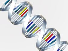 Free DNA Royalty Free Stock Photo - 8624315