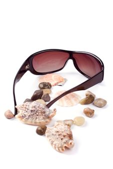 Free Sunglasses, Shells And Pebbles Stock Photo - 8624830
