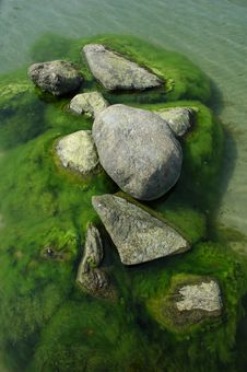 Free Rocks In Water With Seaweed Stock Images - 8628404