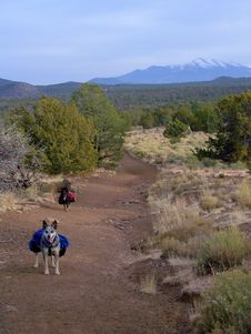 Free Red Mountain Trail Stock Images - 86218514