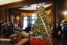 Free Christmas Tree, Property, Light, Decoration Stock Image - 86219261