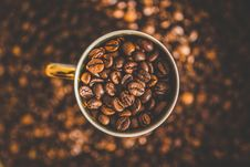 Free Cup Of Coffee On Dry Roasted Beans Stock Photography - 86220132