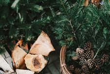 Free Acorns Pine Branches And Firewood Stock Images - 86230674