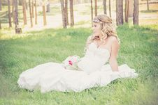 Free Bride Sitting In Sunny Field Royalty Free Stock Photos - 86231488