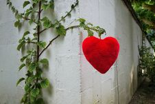 Free PUBLIC DOMAIN DEDICATION - Pixabay-Pexels Digionbew 15. 10-08-16 Heart Hanging At The Wall LOW RES DSC08804 Stock Images - 86245304
