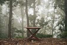 Free Wooden Table In Foggy Woods Royalty Free Stock Photos - 86248768