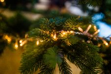 Free Christmas Lights On Bough Royalty Free Stock Photography - 86253747