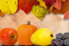 Free Leaves And Fruits Royalty Free Stock Photos - 86256658