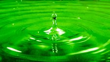 Free Perspective Photography Of Water Droplet Royalty Free Stock Image - 86257656