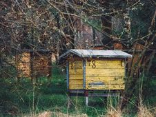 Free Wooden Bee Hives Royalty Free Stock Image - 86258816