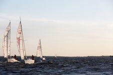 Free Sailboats Royalty Free Stock Photography - 86298937
