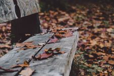 Free Wood Bench Stock Images - 86299724